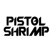 Pistol Shrimp (via Rightsify)